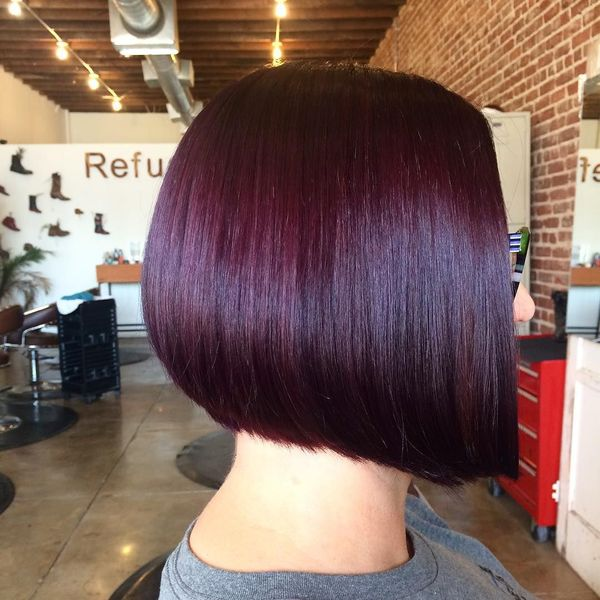 Burgundy Plum Hair Color 2